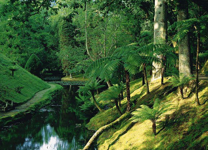 Terra Nostra Botaniska Parke, Furna , São Miguel