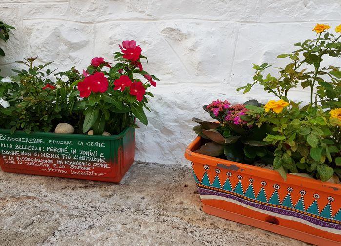 Blomsterlådor Alberobello